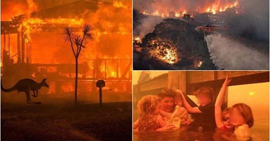 Cháy rừng lan khắp nước Úc: 480 triệu động vật qua đời, 1.500 nhà thiêu rụi, cả thế giới cầu nguyện